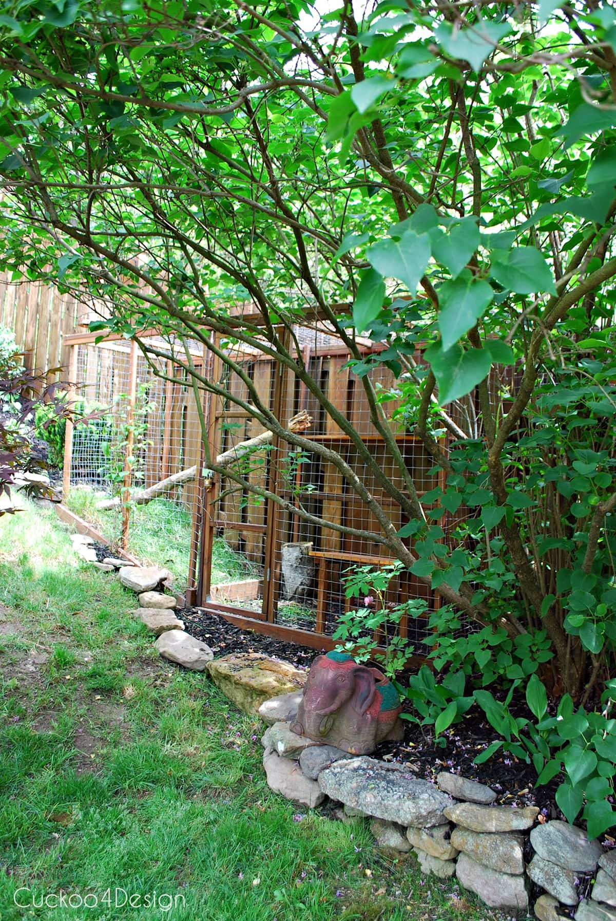 cat enclosure with chicken wire and pressure treated wood hidden behind lilac bush