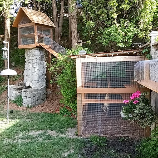 Also check out my other pet related posts: - Easy DIY Cat Enclosure - Cuckoo4Design