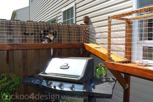 DIY outdoor cat enclosures - Easy DIY Cat Enclosure - Cuckoo4Design