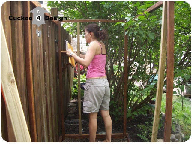 building of the cat enclosure