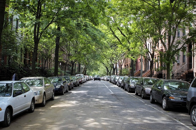NYC treelined street with brownstones