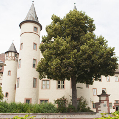 Lohr Snow White Castle