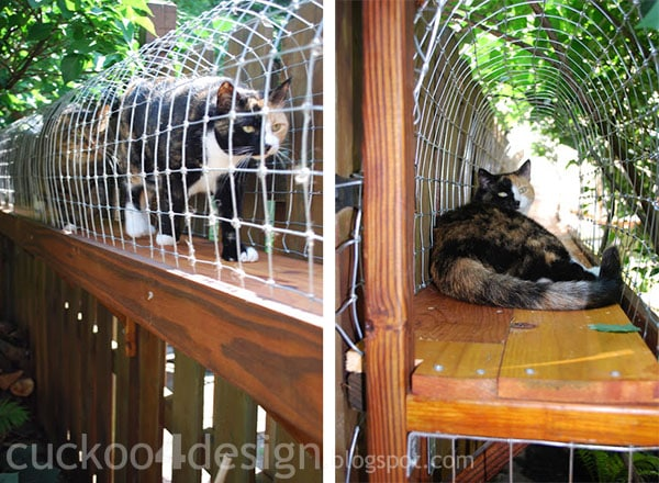 cat enclosure for indoor cats by cuckoo4design