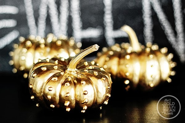gold studded pumpkins