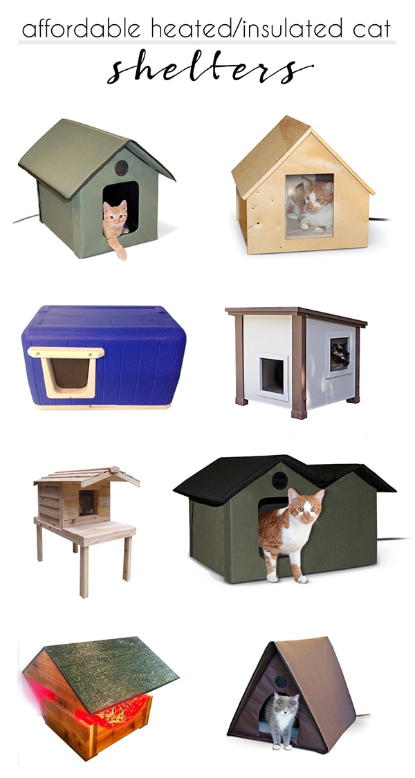 best affordable heated outdoor cat shelters | How to keep outdoor and stray cats safe and warm during winter time | How to help cats survive winter time