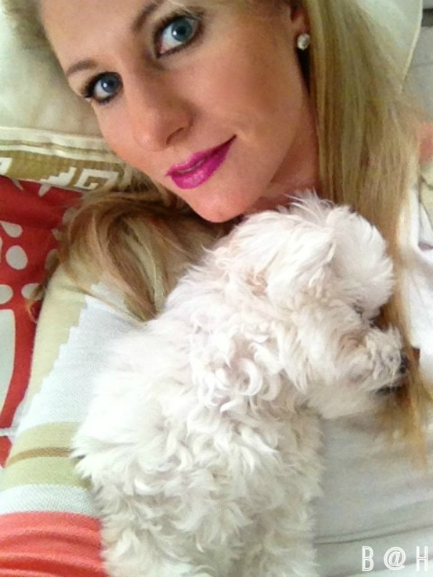 Living Pretty with your Pets    B @ H
