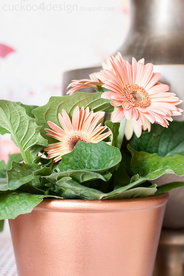 blush daisies in copper flower pot