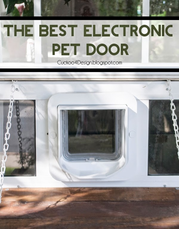 Custom Electronic Pet Door Contraption Cuckoo4design