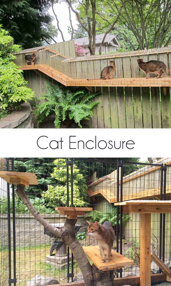 DIY outdoor cat enclosure catio