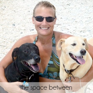 Living Pretty With Your Pets: the space between
