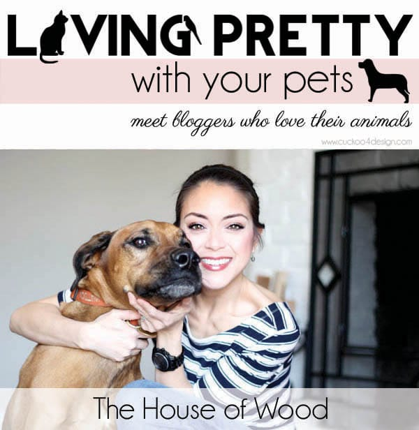 Living Pretty With Your Pets: House of Wood