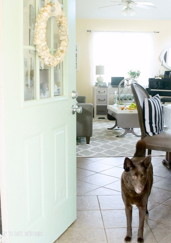 Living Pretty With Your Pets: Up To Date Interiors