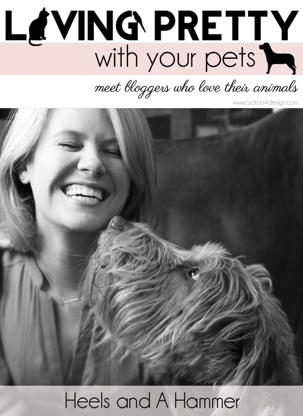 Living Pretty With Your Pets: Heels and A Hammer