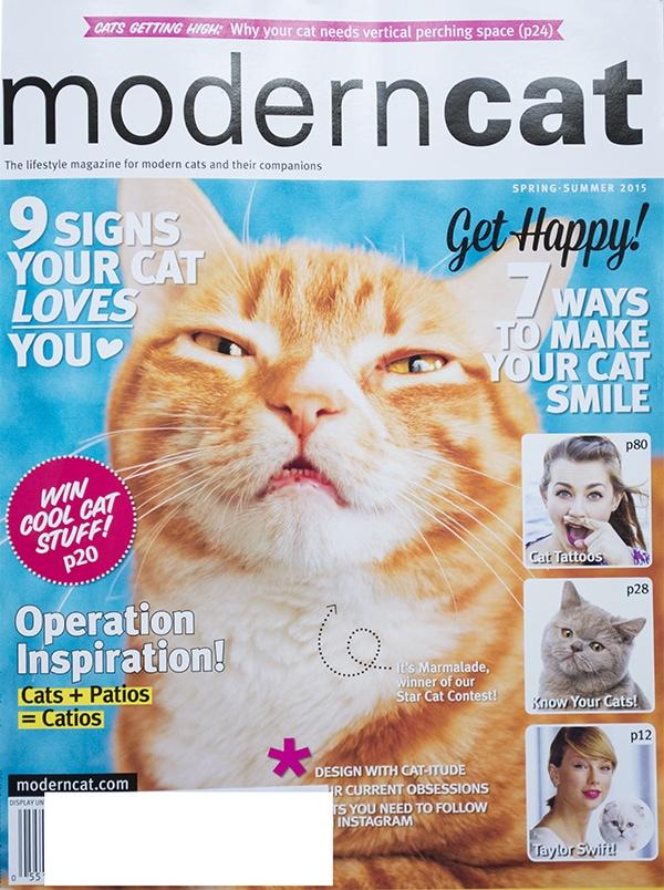 cat magazine feature - Cuckoo4Design