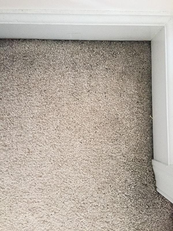 black_dust_in_corners_of_carpet_2