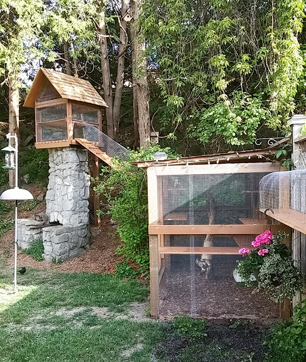 Another awesome outdoor cat enclosure cuckoo4design for What goes into building a house