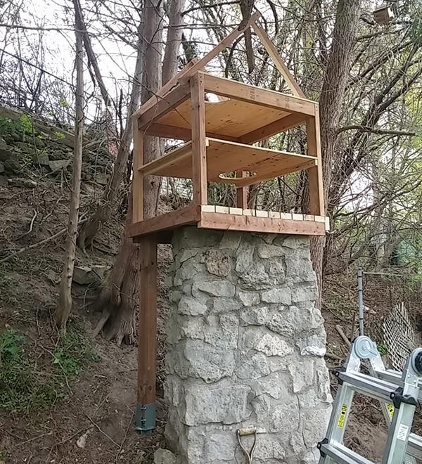 beginning of outdoor wooden cat enclosure structure