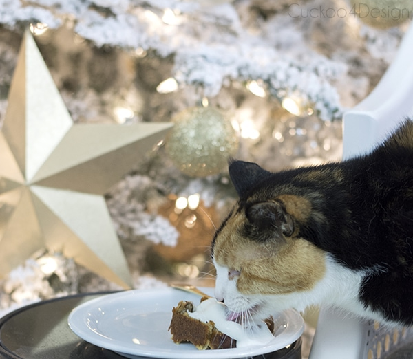 Christmas Cat Licking Plate