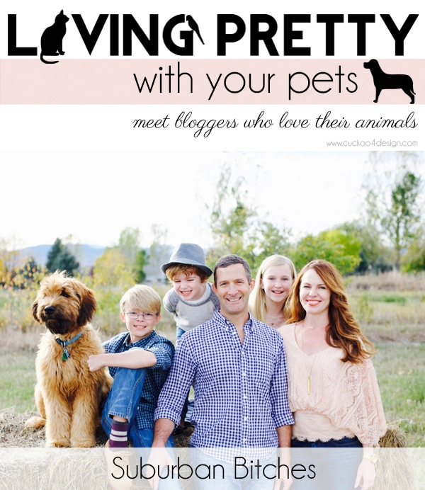 Living Pretty With Your Pets - Suburban Bitches