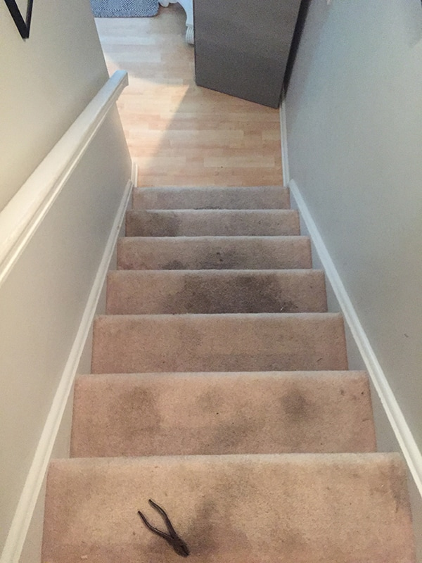 removing dirty carpet from stairs