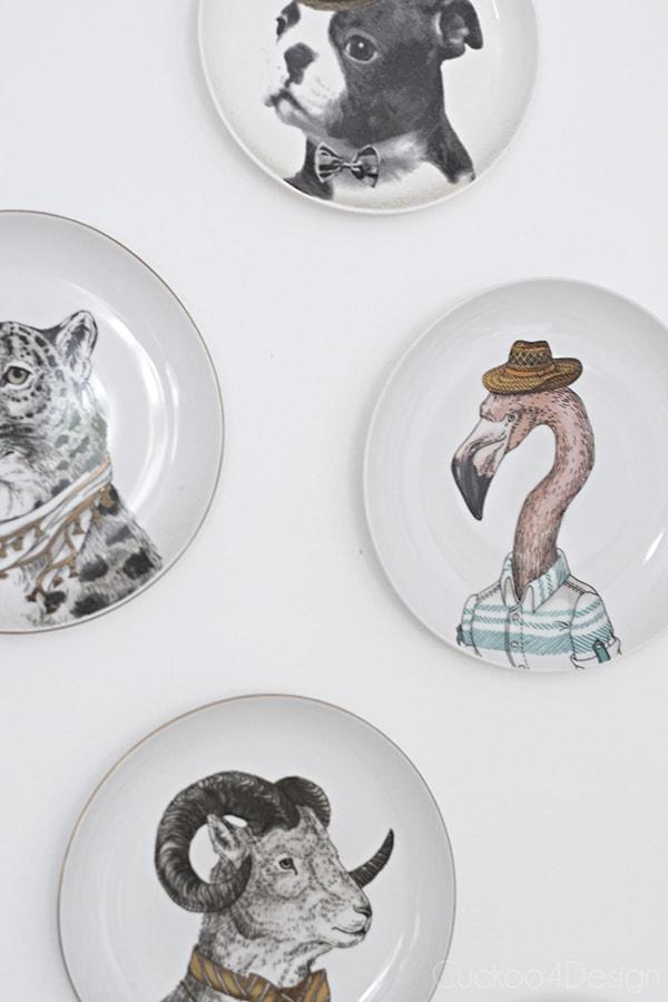fun animal plates