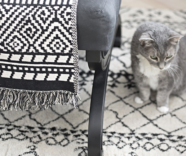 black and white rug and ottoman