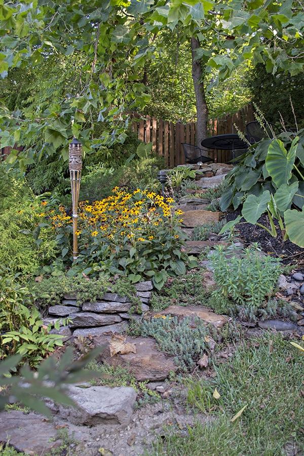 Pennsylvania_end_of_summer_garden_23