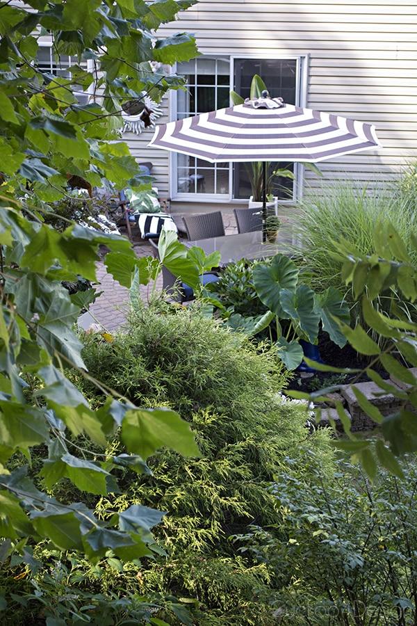 Pennsylvania_end_of_summer_garden_24