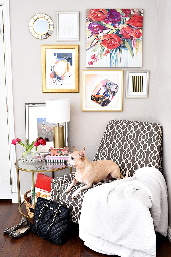 Living Pretty with your pets: Monica Wants It