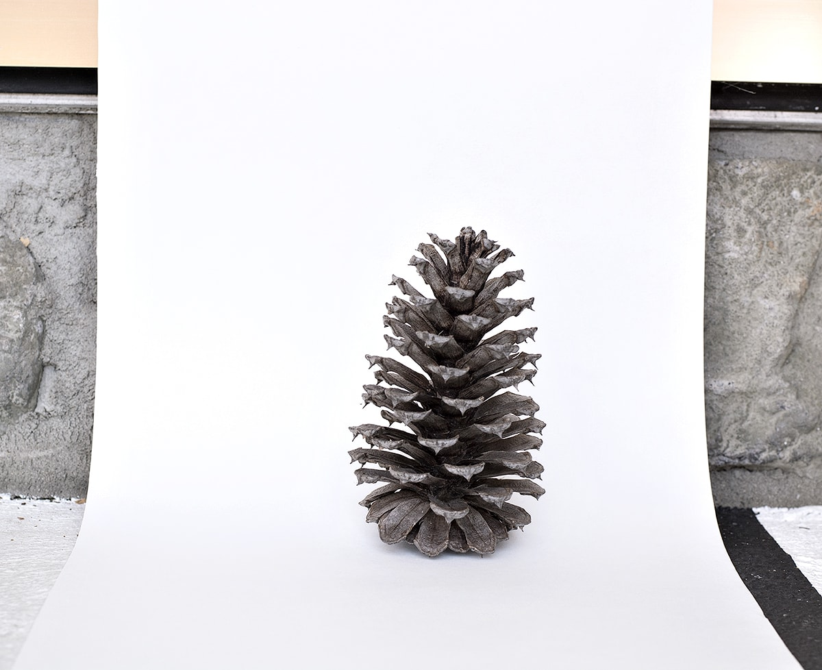 how to snap a detailed photo with white background