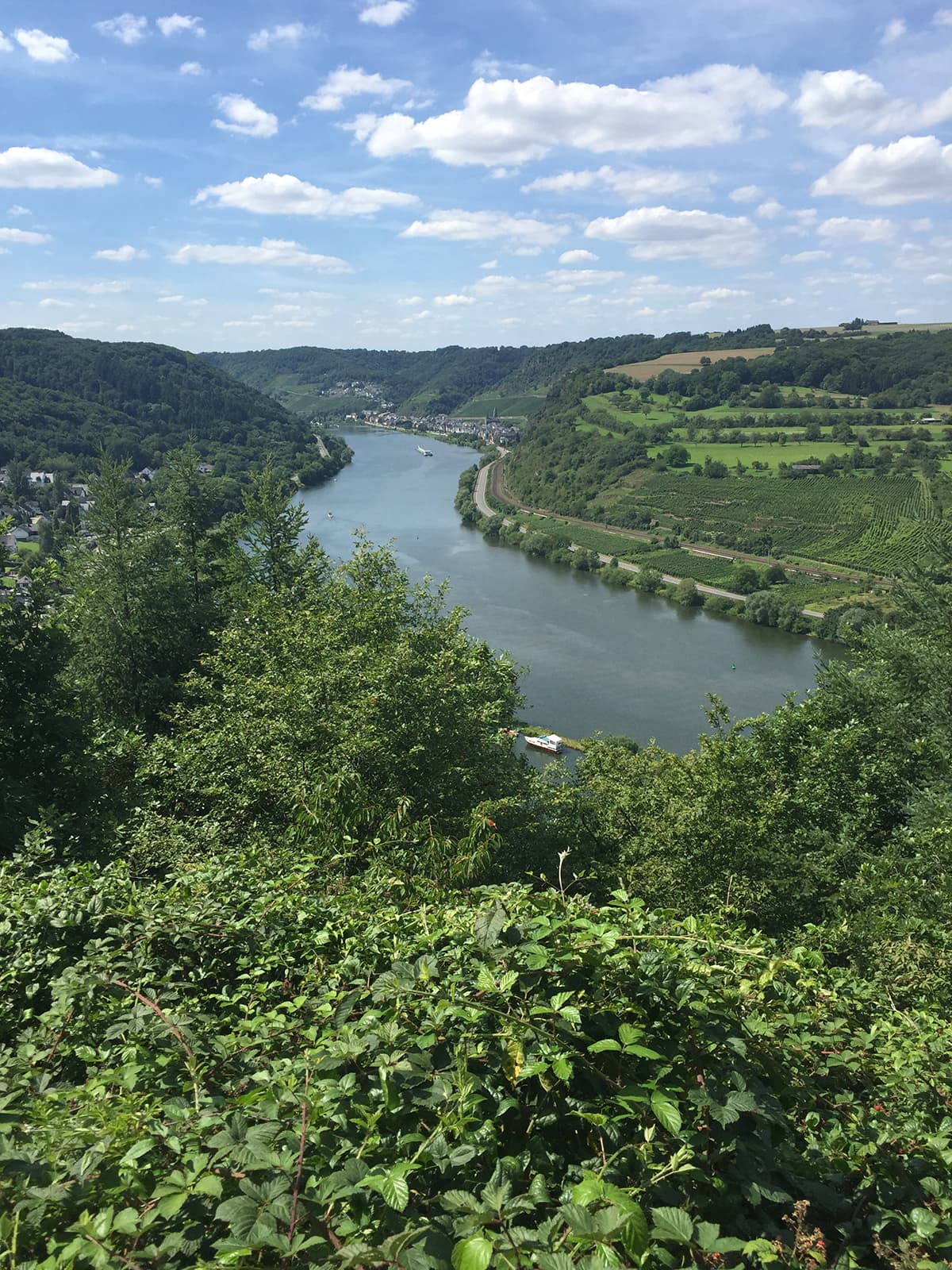 view of the Mosel river