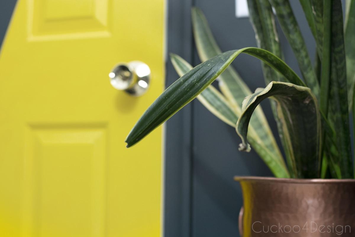 sophisticated boys room with dark green walls | Cuckoo4Design