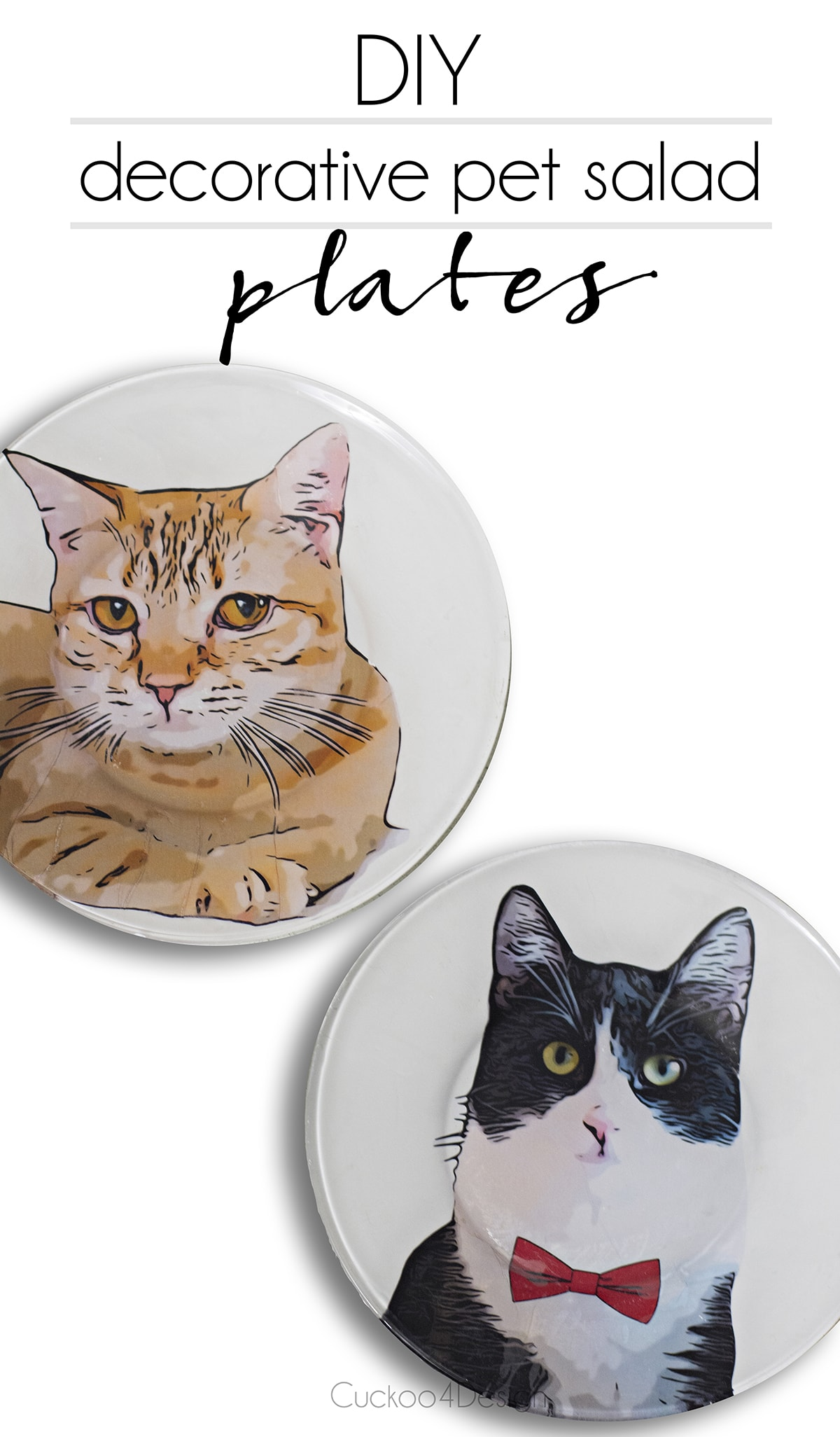 DIY decorative pet salad plates