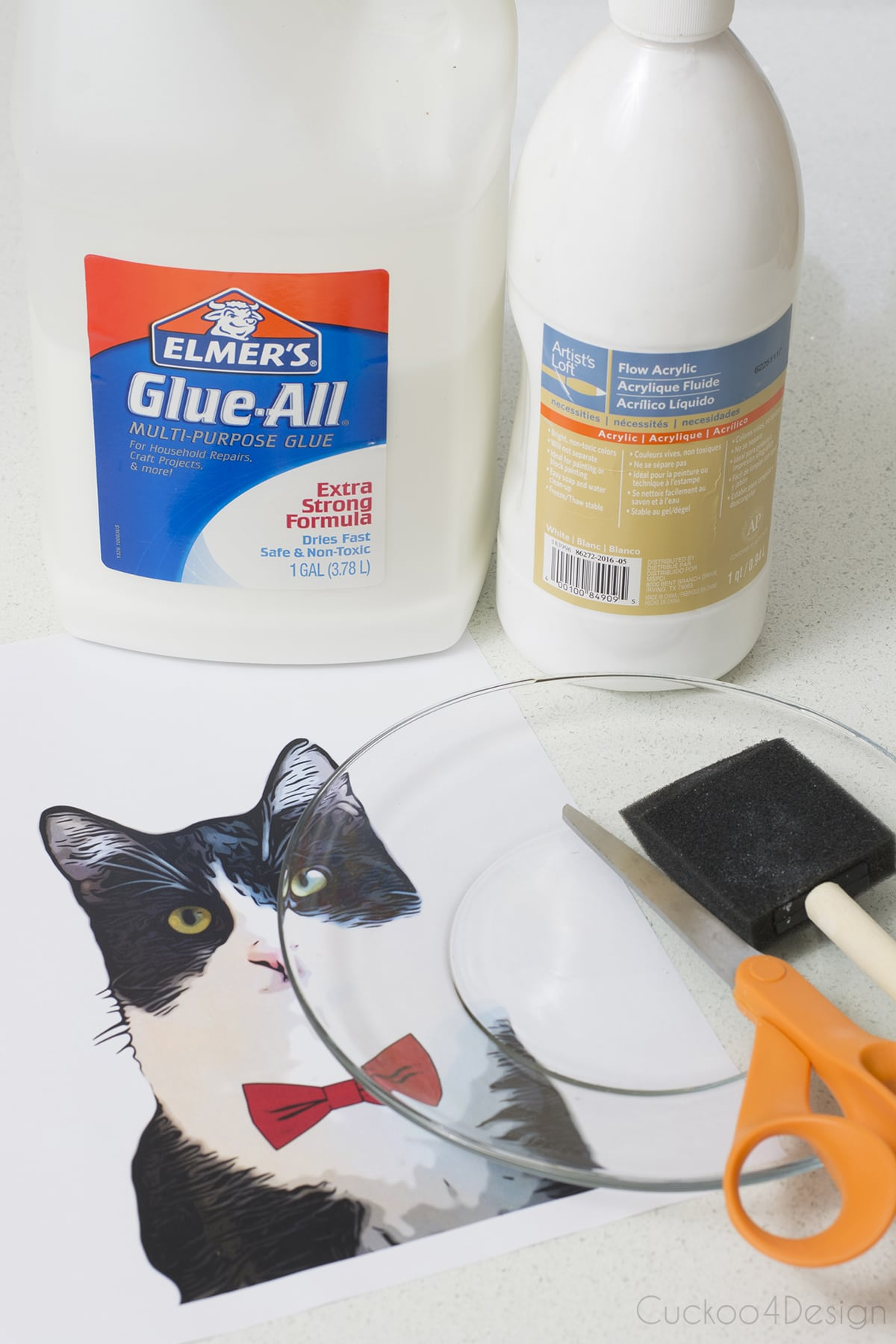 supplies you need to make a customized plate of your pets