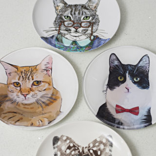 How to make a personalized_salad_plate of your pet for walldecor