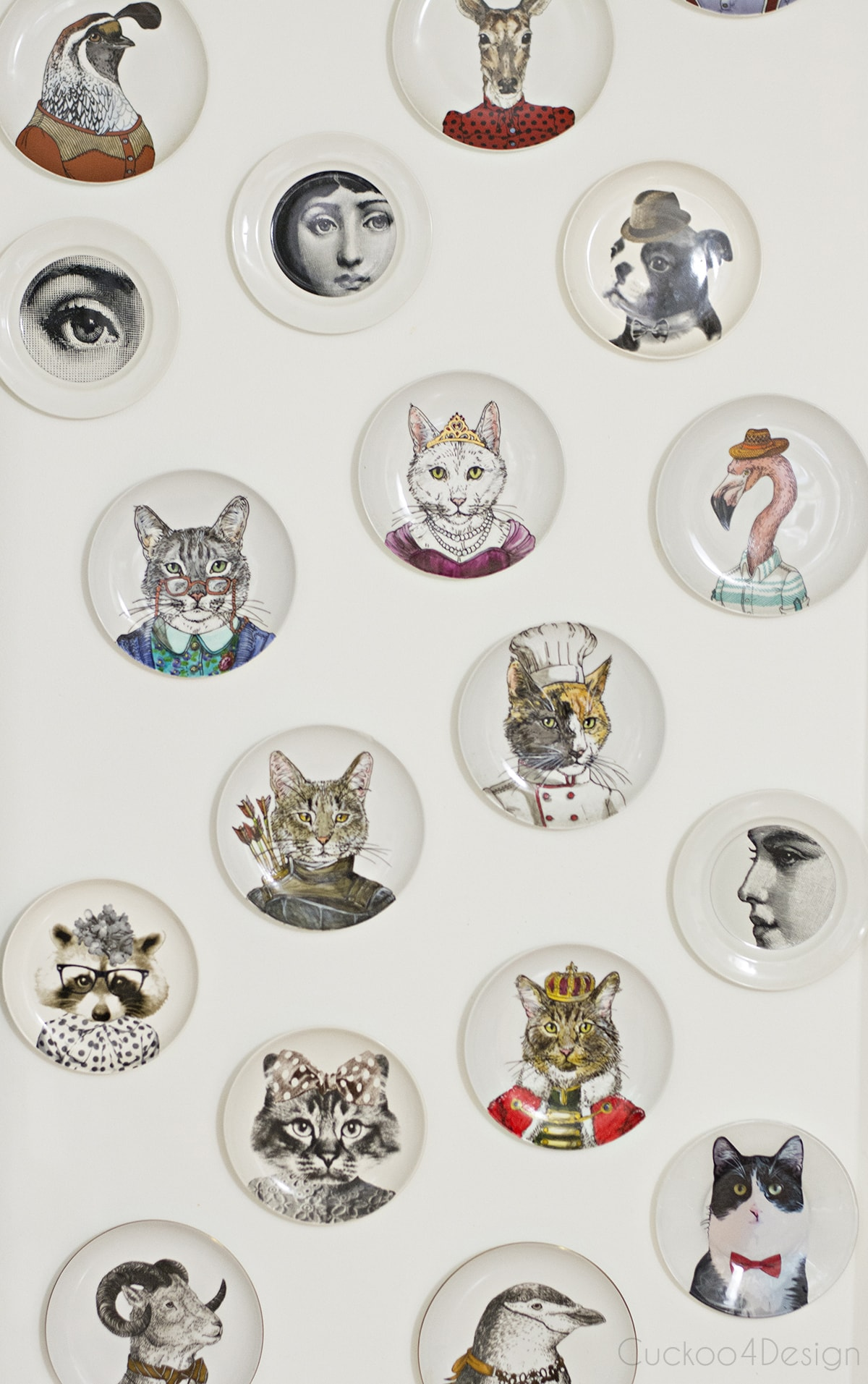 gallery wall with anthropomorphic animal plate collection