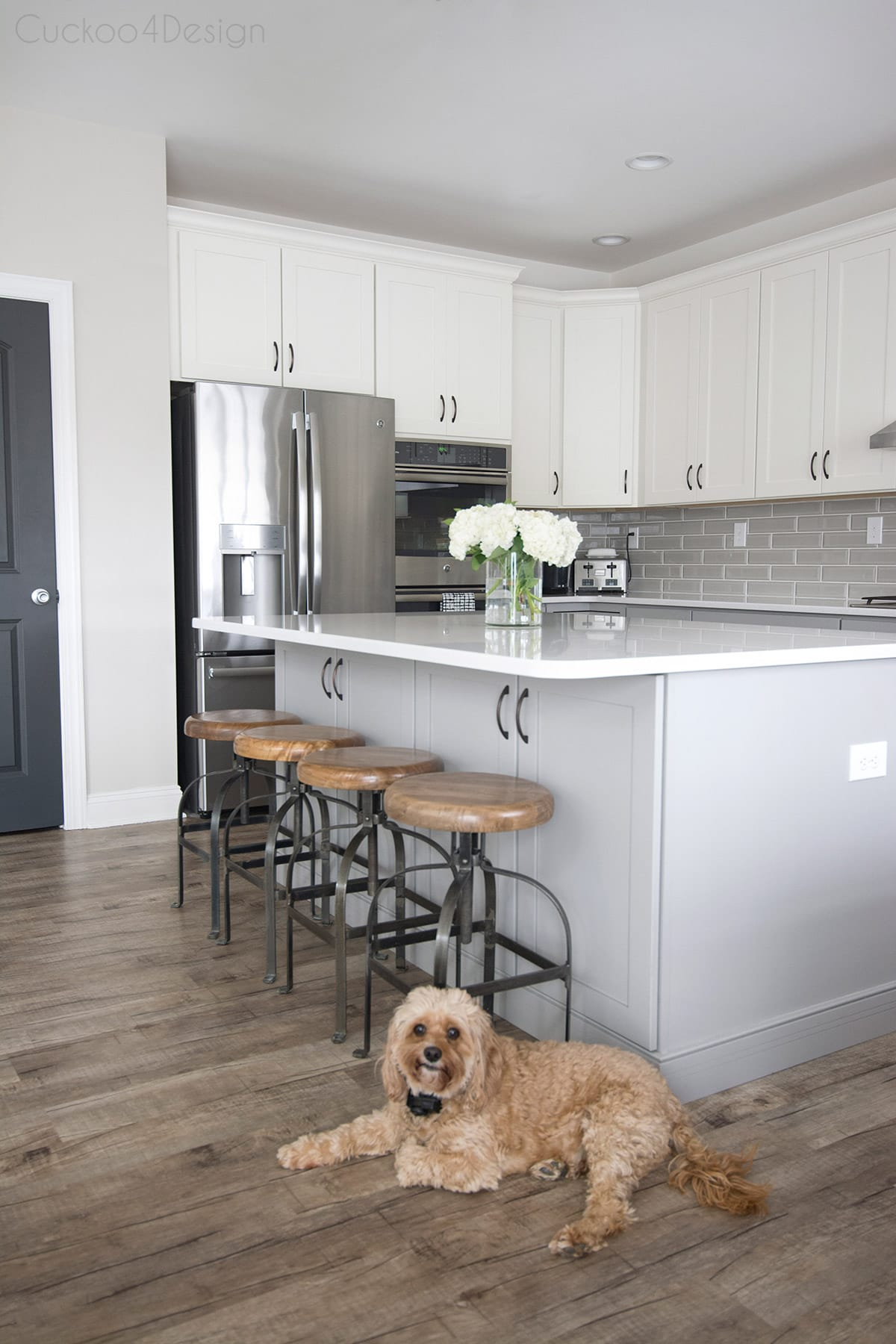 dog inn grey and white kitchen
