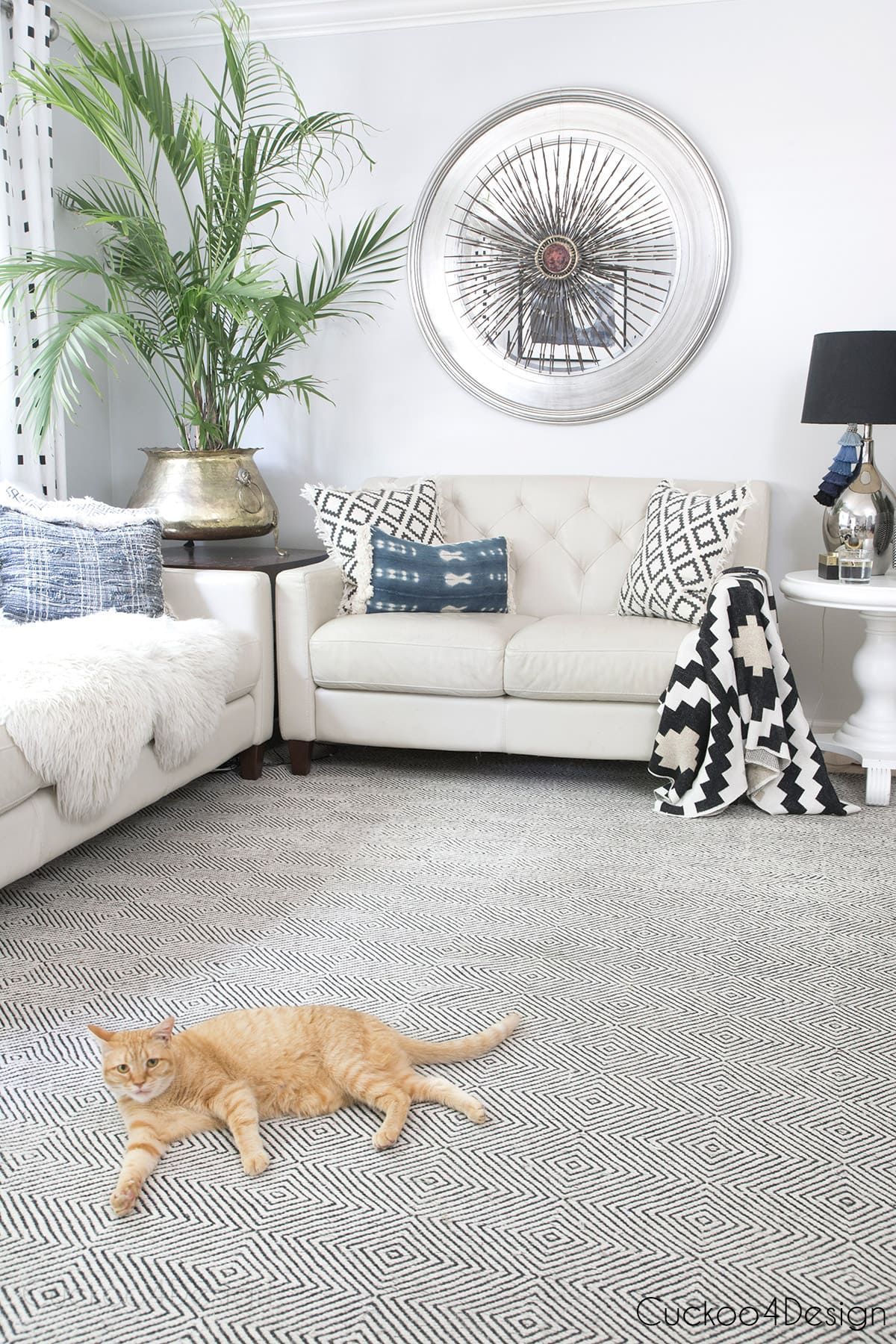 crosswave pet pro review on lat weave area rug