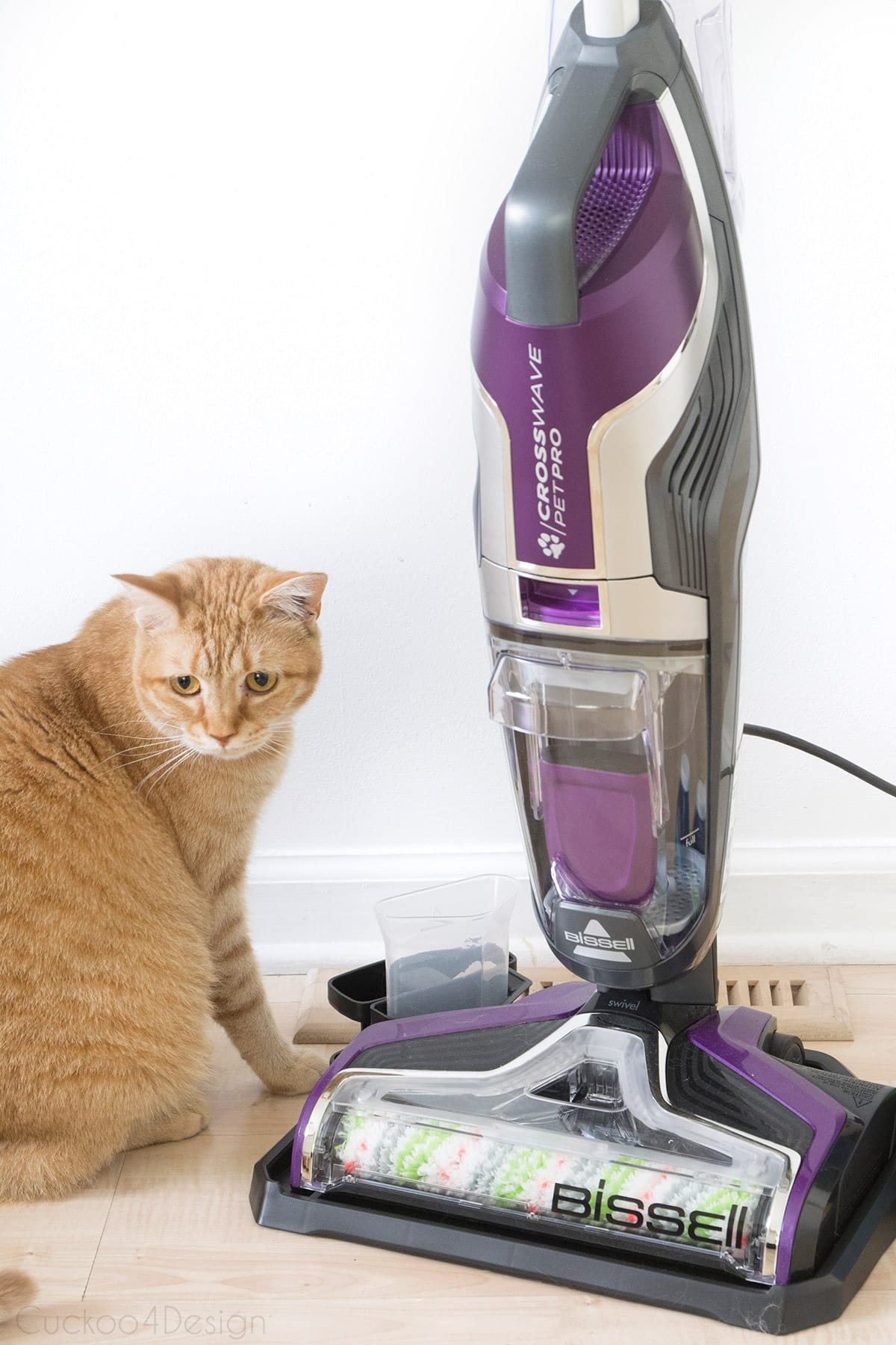 BISSELL crosswave pet pro review in cat household