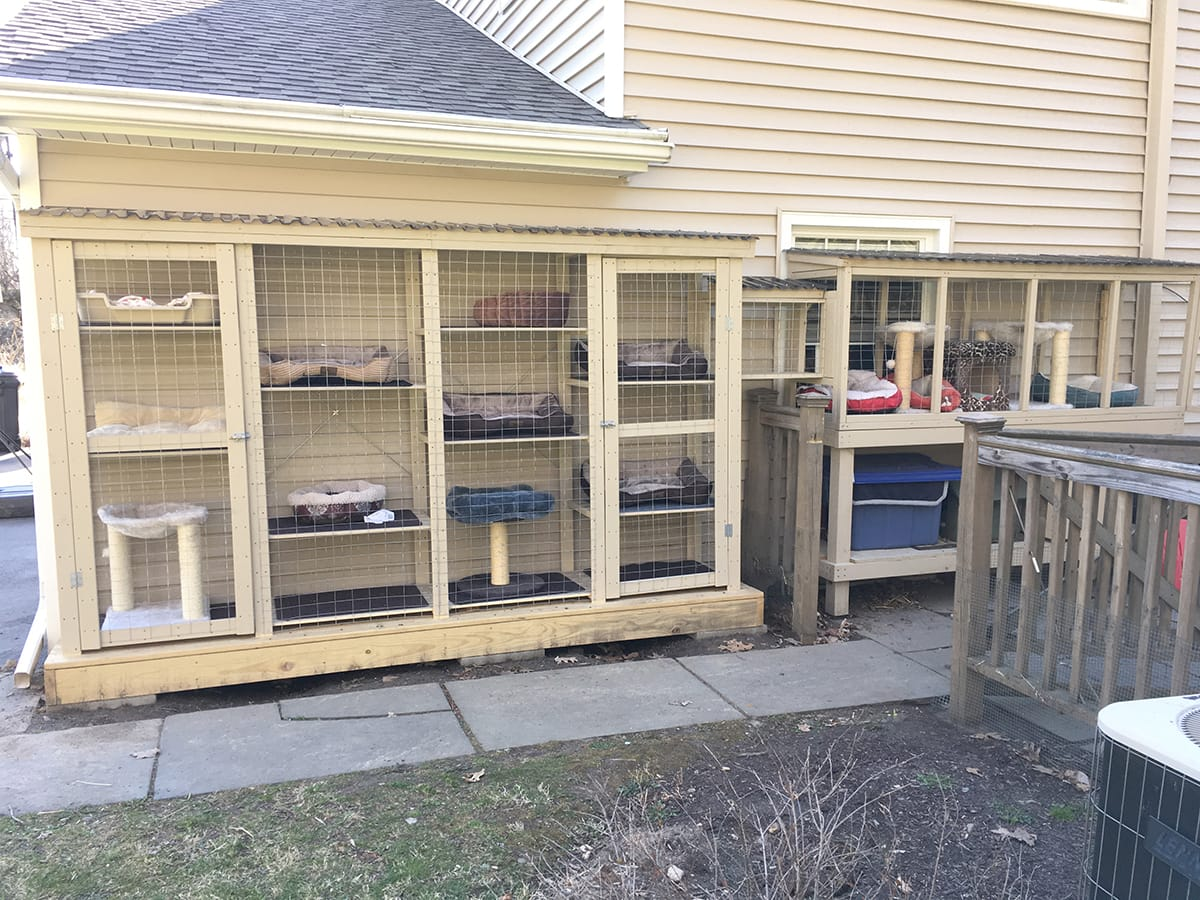 outdoor cat cage cation attached to house and garage