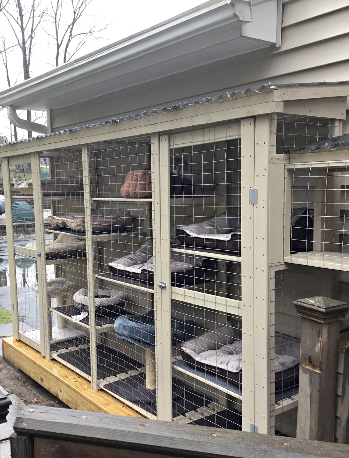 four column shelving unit turned into outdoor cat cage with roof