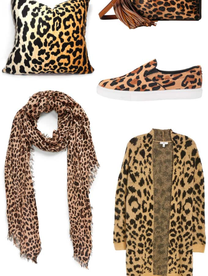 leopard print favorites