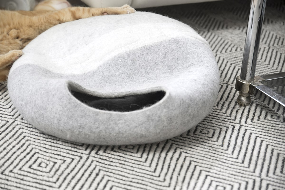 orange tabby cat scratching her new cat cave