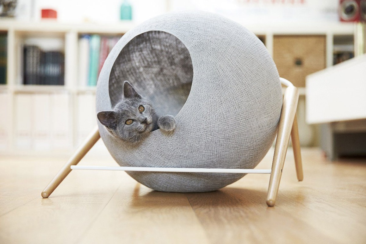 cat sphere