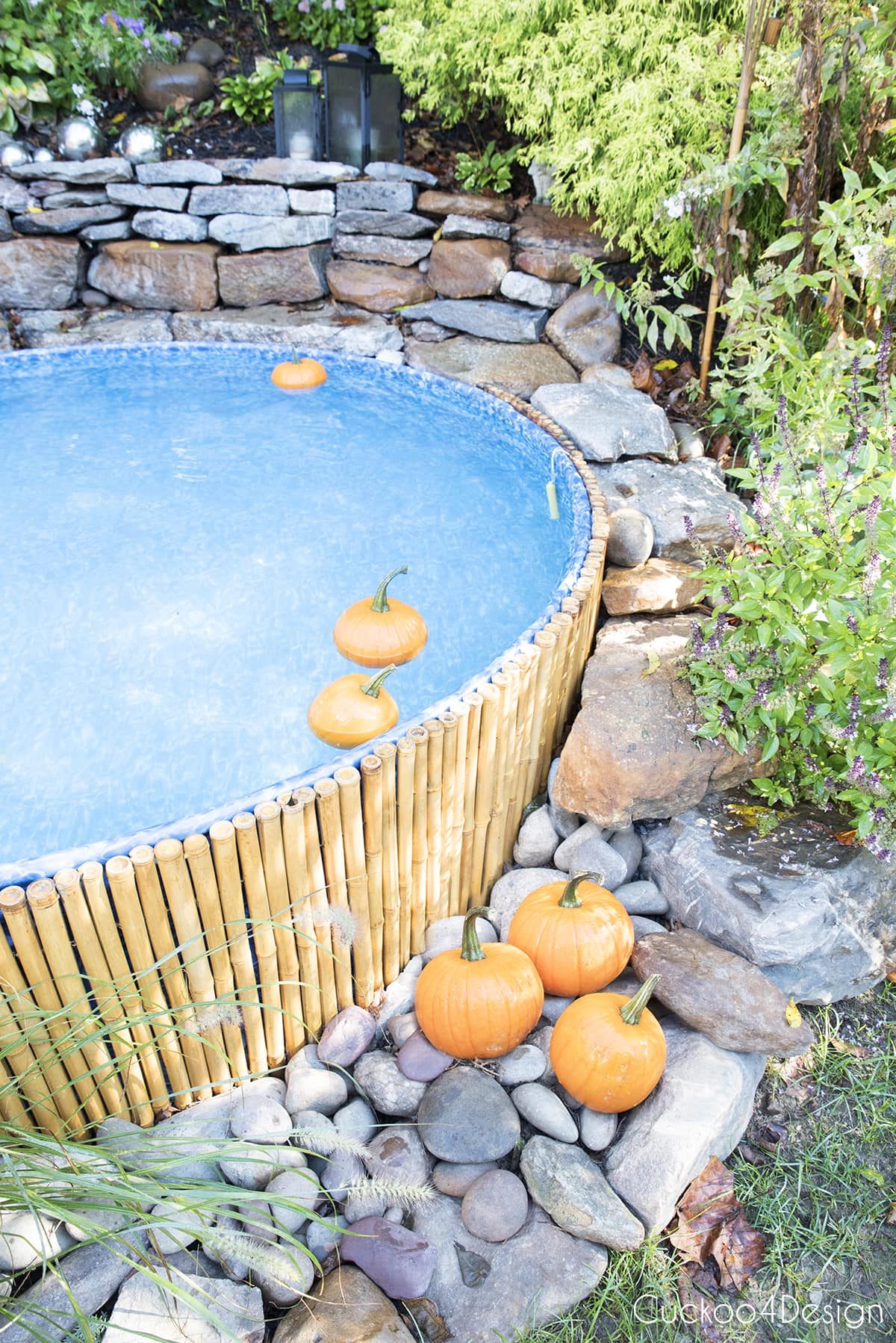 pumpkins floating in a stock tank pool