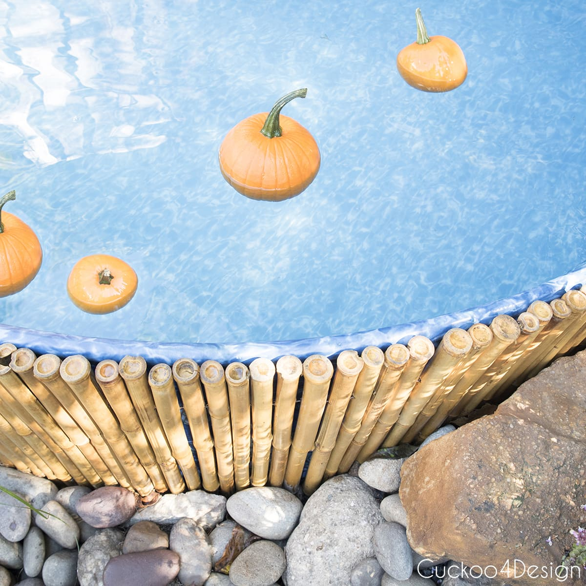 small floating pumpkins in stock tank pool