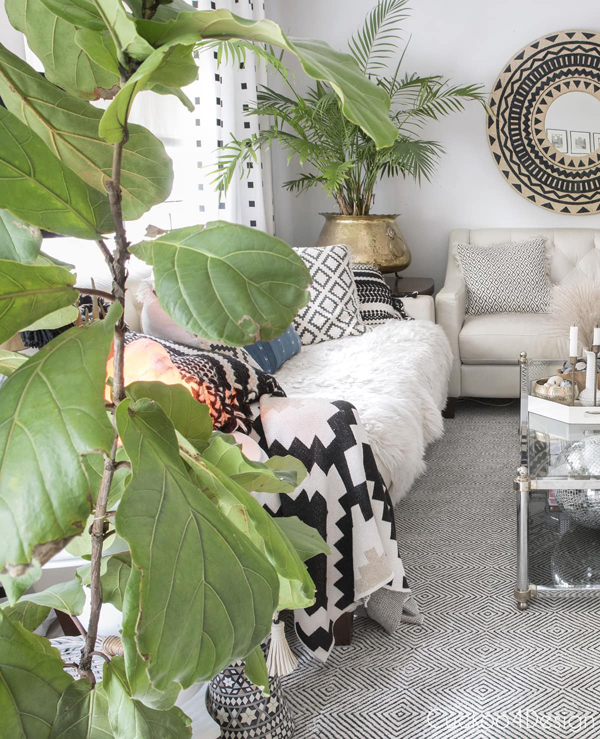 urban jungle neutral living room