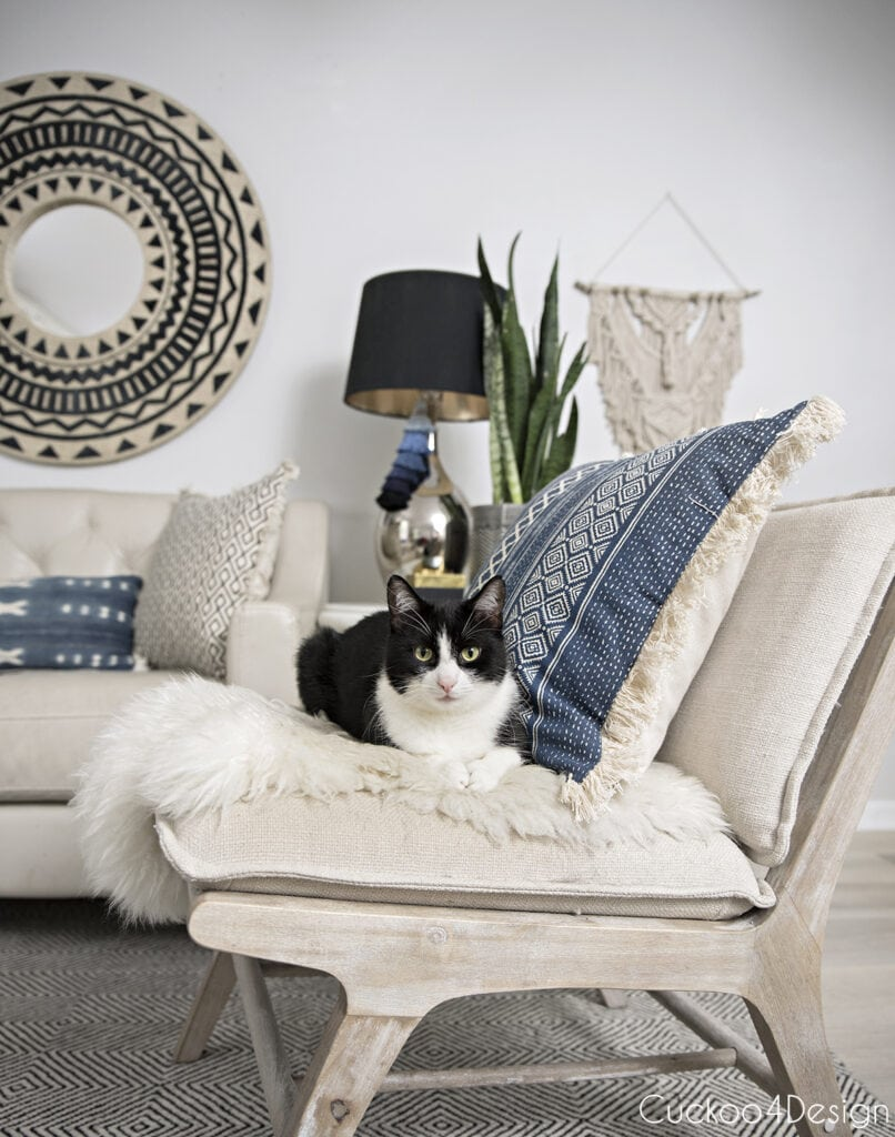 tuxedo cat in neutral and blue living room on covered chair