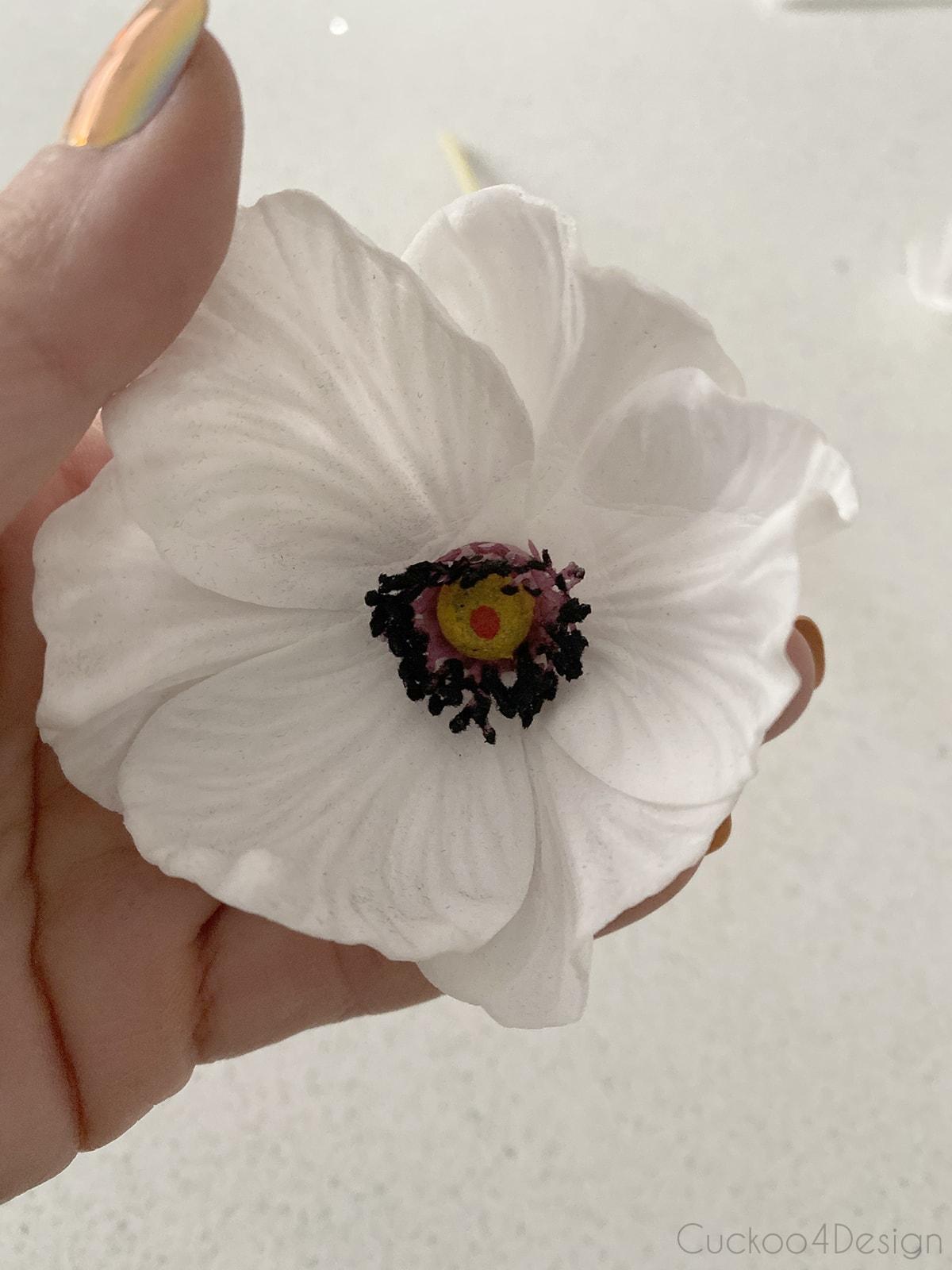 small white poppy flower with dark center
