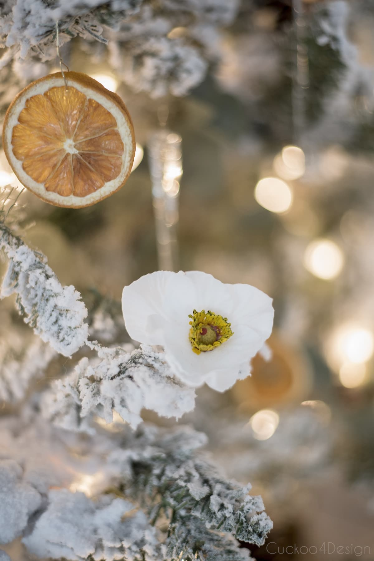 German Christmas rose and dried orange slices in German Christmas tree